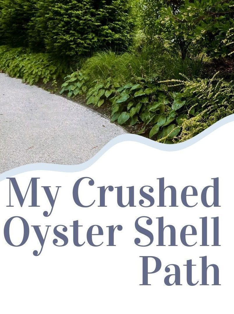 My New Sustainable Coastal Crushed Oyster Shell Garden Path