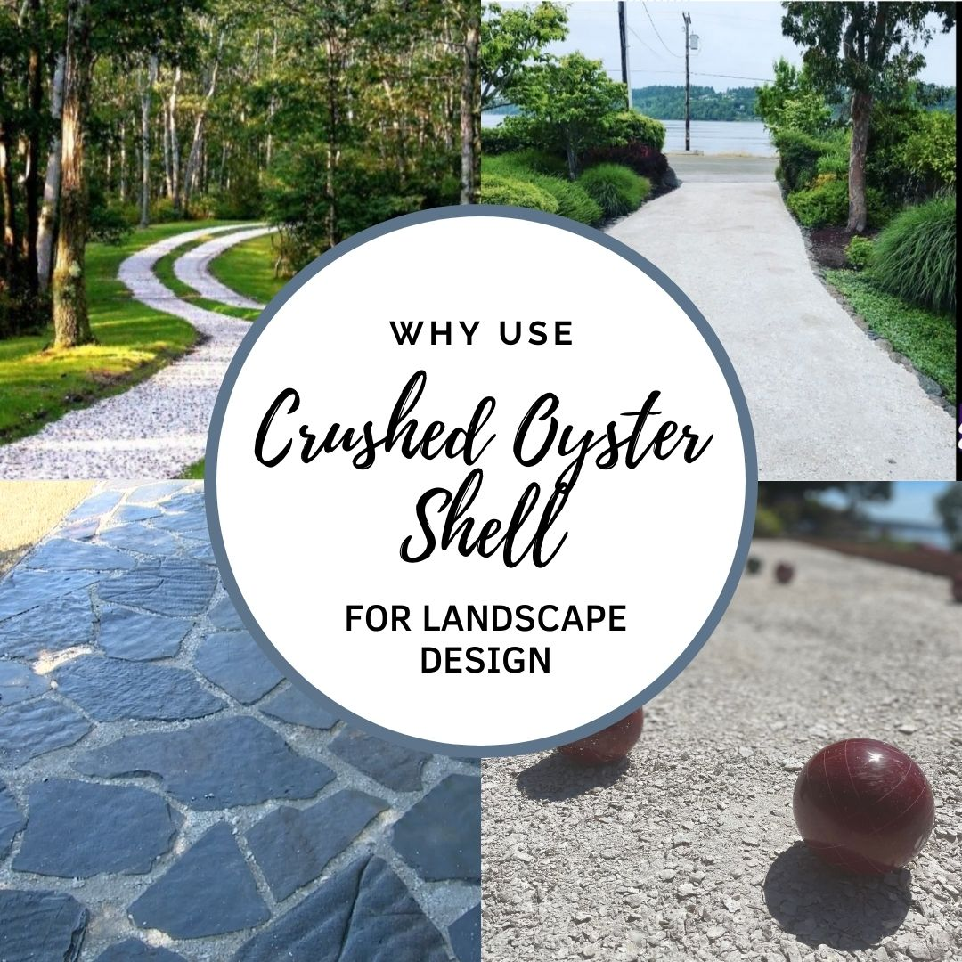 11 Reasons To Use Crushed Oyster Shell In Your Landscape